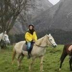 ruta caballo colegios