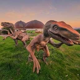 Museo Dinosaurios